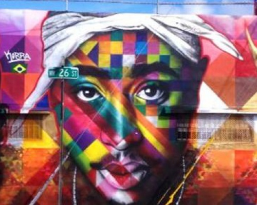 EDUARDO KOBRA, street artist