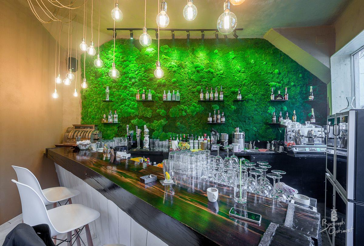 Rainforests in Shift Pub, Bucharest  - Cristian Vasile Photography (18)