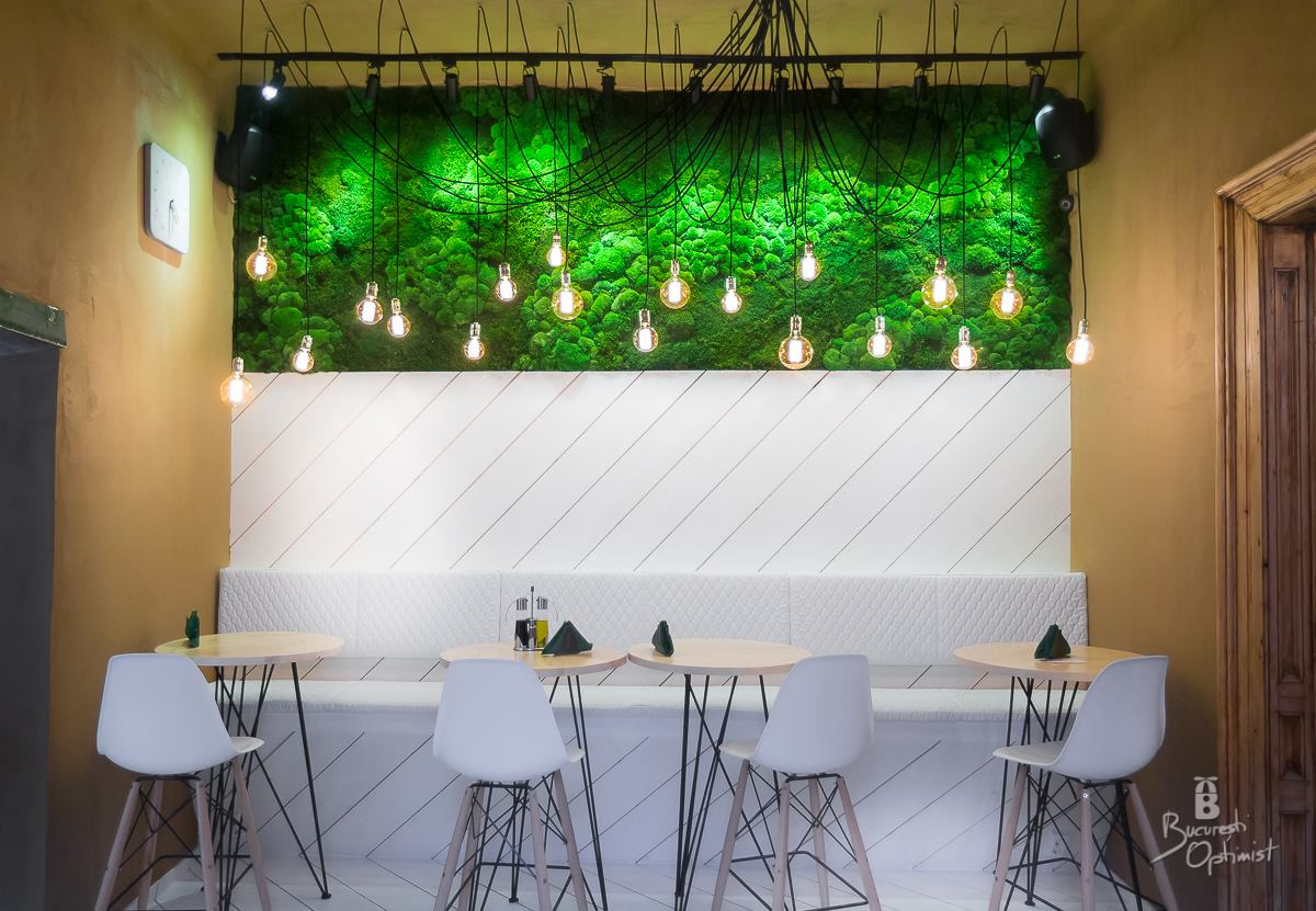 Rainforests in Shift Pub, Bucharest  - Cristian Vasile Photography (2)