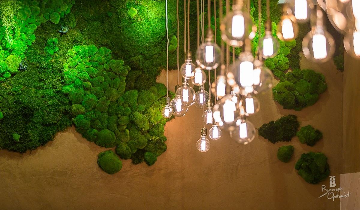 Rainforests in Shift Pub, Bucharest  - Cristian Vasile Photography (24)