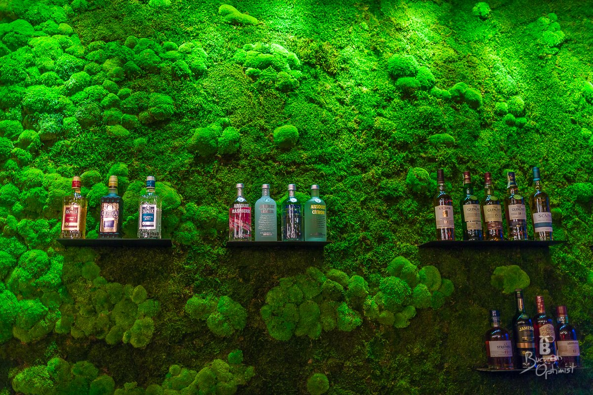 Rainforests in Shift Pub, Bucharest  - Cristian Vasile Photography (6)