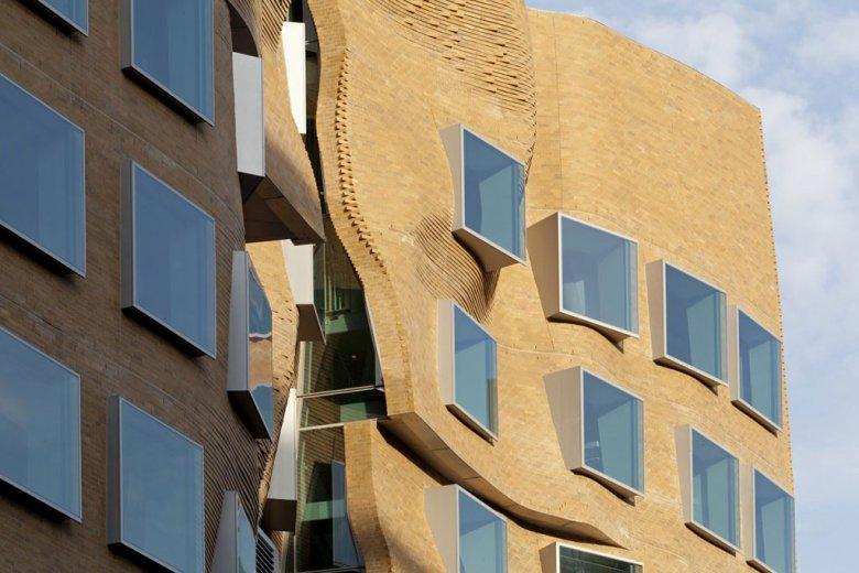 frank-gehrys-crumpled-bag-building-5