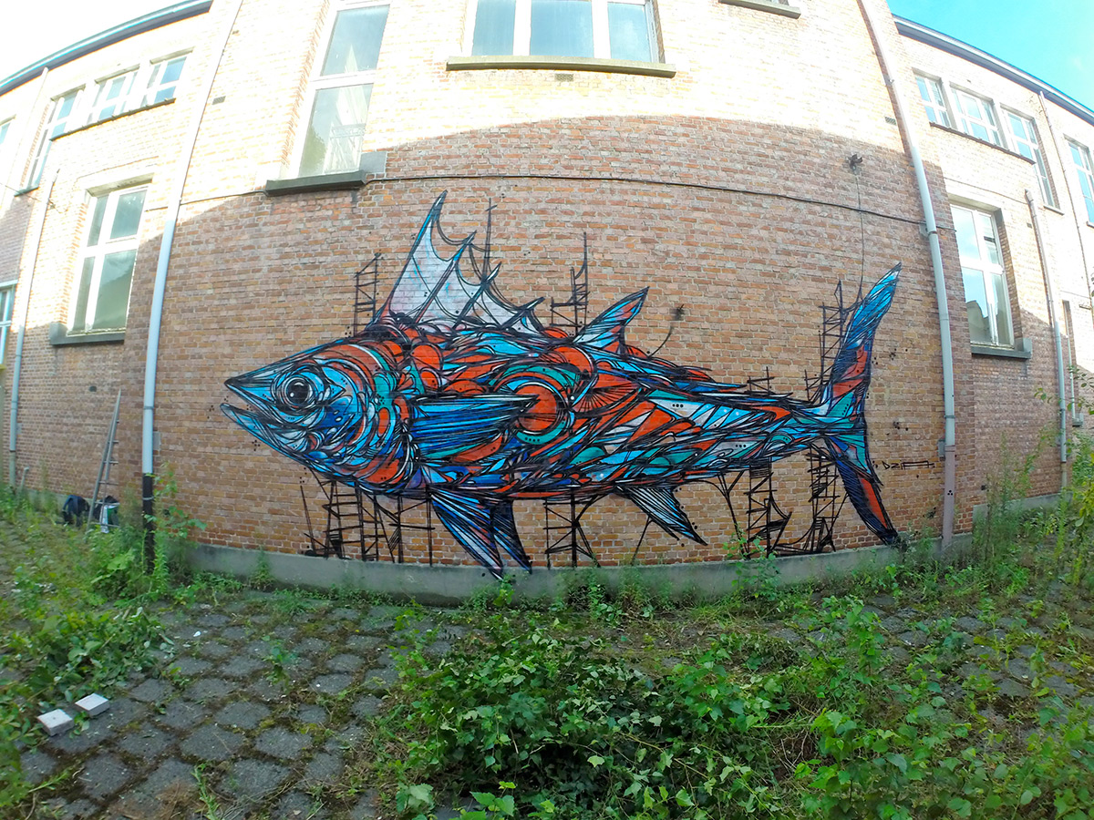 Graffiti of Animals and Insects on the Streets of Antwerp by 'Dzia' (5)