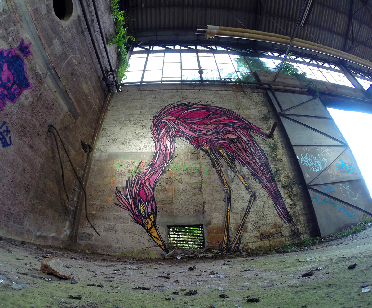 Graffiti of Animals and Insects on the Streets of Antwerp by 'Dzia' (6)