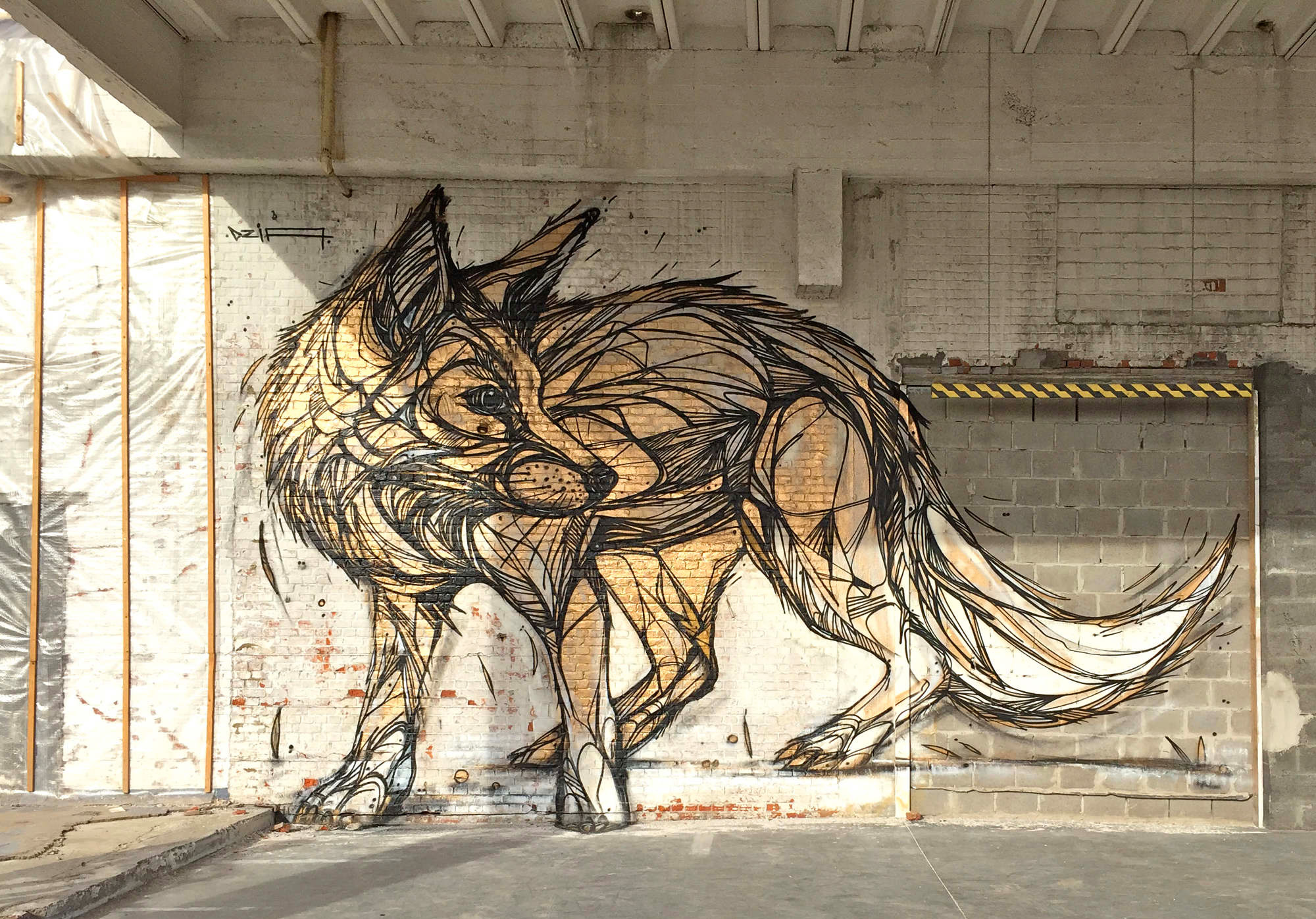 Graffiti of Animals and Insects on the Streets of Antwerp by 'Dzia' (8)