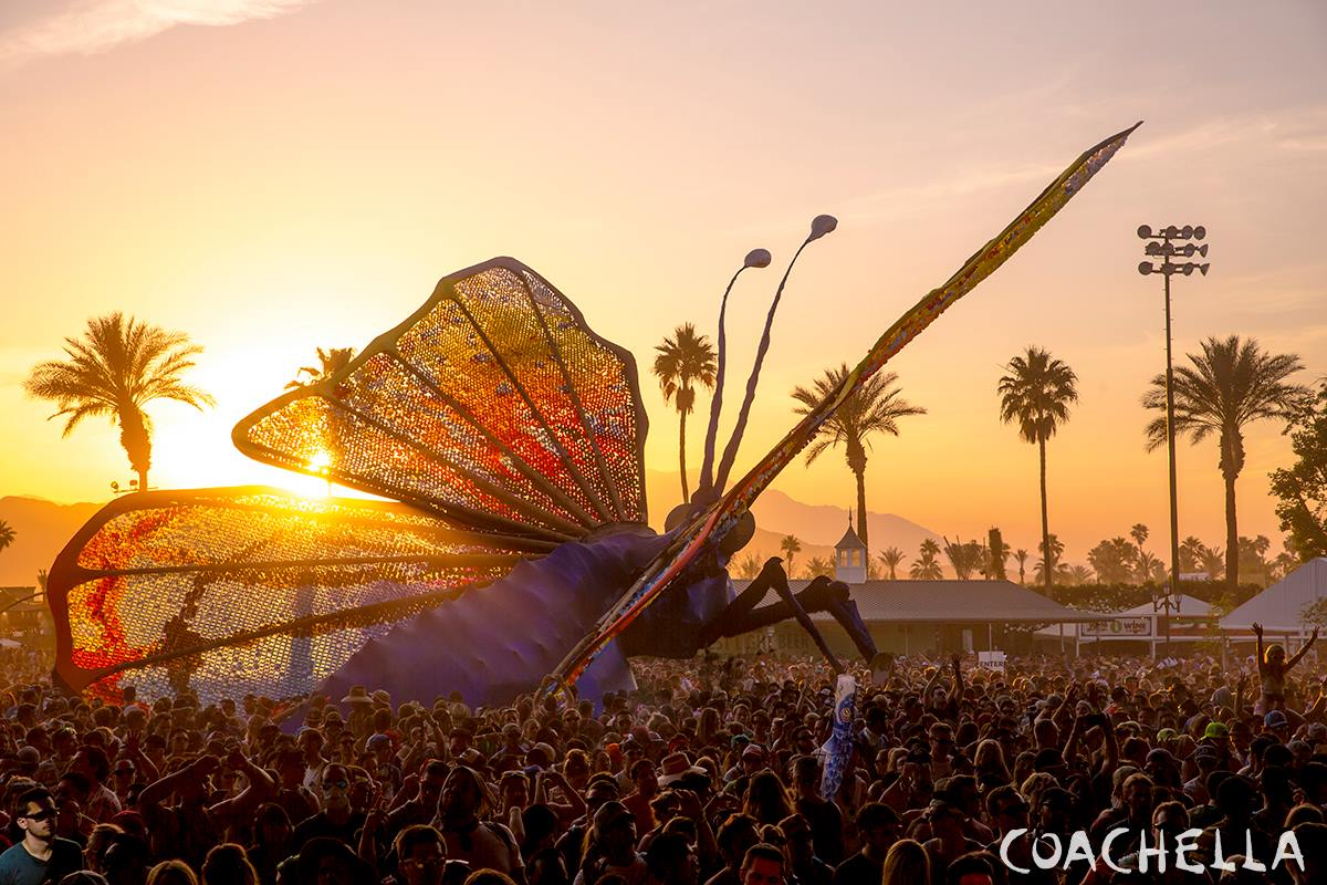 Coachella 2015 Weekend 2 Photo Gallery (15)