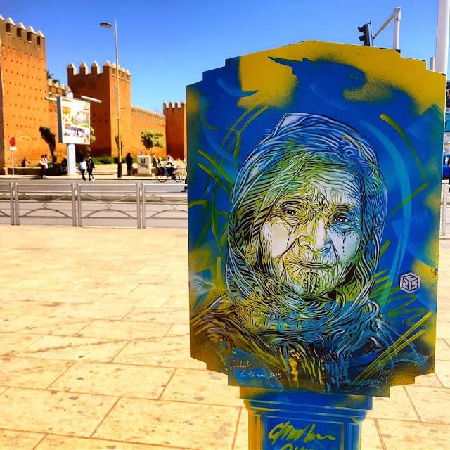 New street art work series by C215 (2)