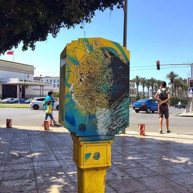 New street art work series by C215 (4)