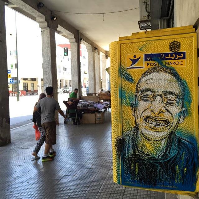 New street art work series by C215 (5)
