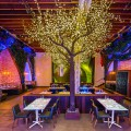 An exclusive playground for adults Parq in San Diego, CA - the vandallist (16)