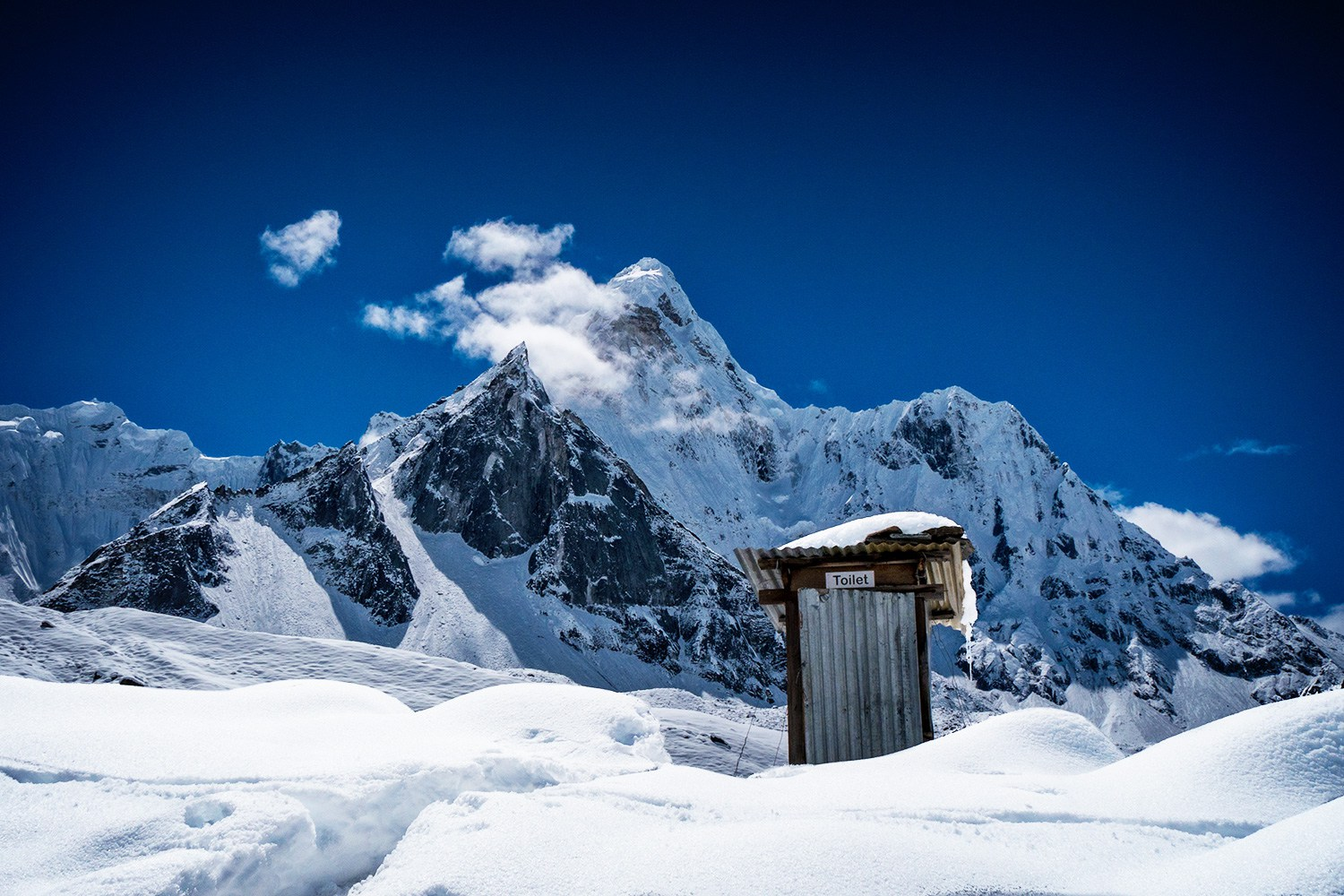 A Spotter's Guide to Most Scenic Bathrooms - the vandallist (11)