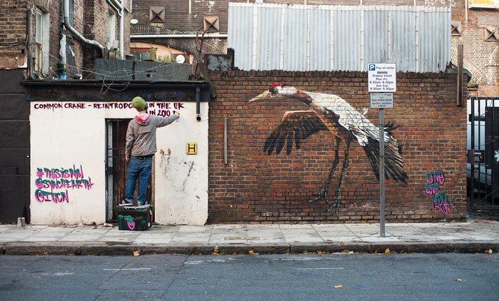 LOUIS MASAI documents endangered species from UK wildlife - the vandallist (4)