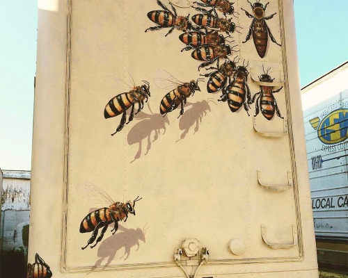 50,000 bees for The Good of the Hive – by MATT WILLEY