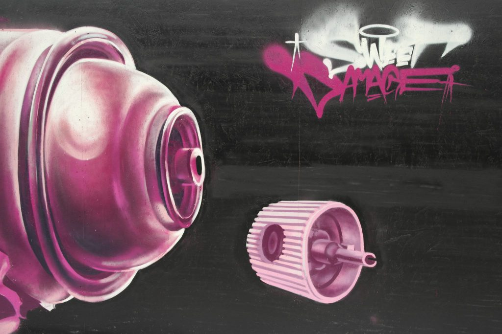 the-vandallist-influencers-cage-sweet-damage-crew-13