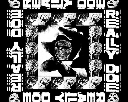 Danny Brown Drops Really Doe Lyric Video
