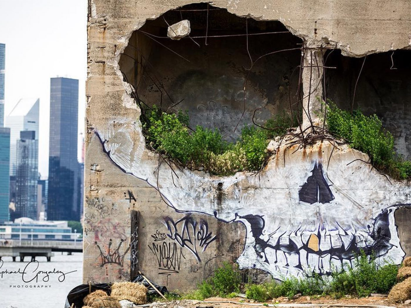 Ghoulish Skull by Suitswon in Greenpoint - the vandallist (4)