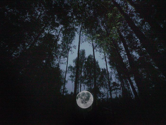 """""""Astronomia Nova"""" by Faith47 & Lyall Sprong - the vandallist (3)"""