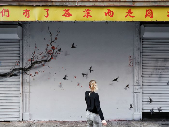 Public Interventions Using Natural Elements by Pejac in New York City - the vandallist (2)