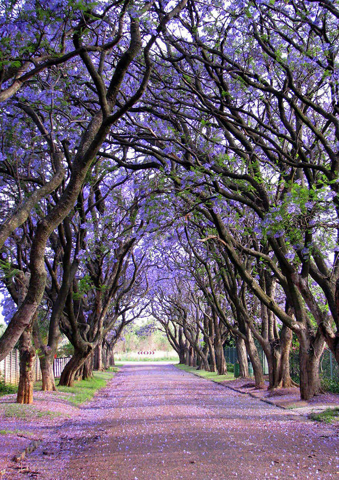 Cullinan, South Africa