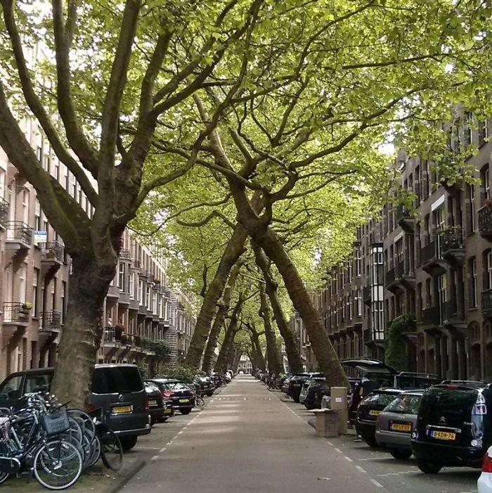 Lomanstraat Amsterdam, The Netherlands
