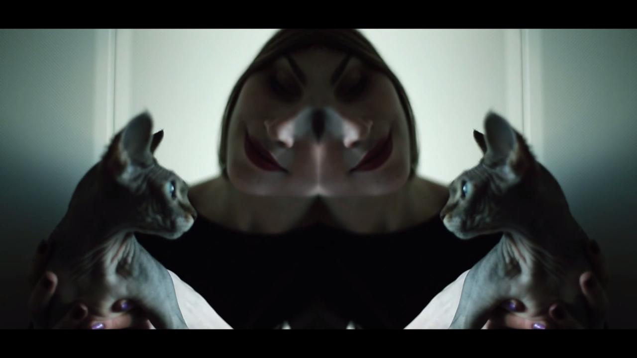 Sasha Unisex & Yellow Dog Moscow  VIDEO (4)